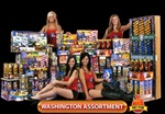 Washington Assortment